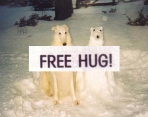 free hug